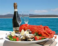 Port Stephens Tours
